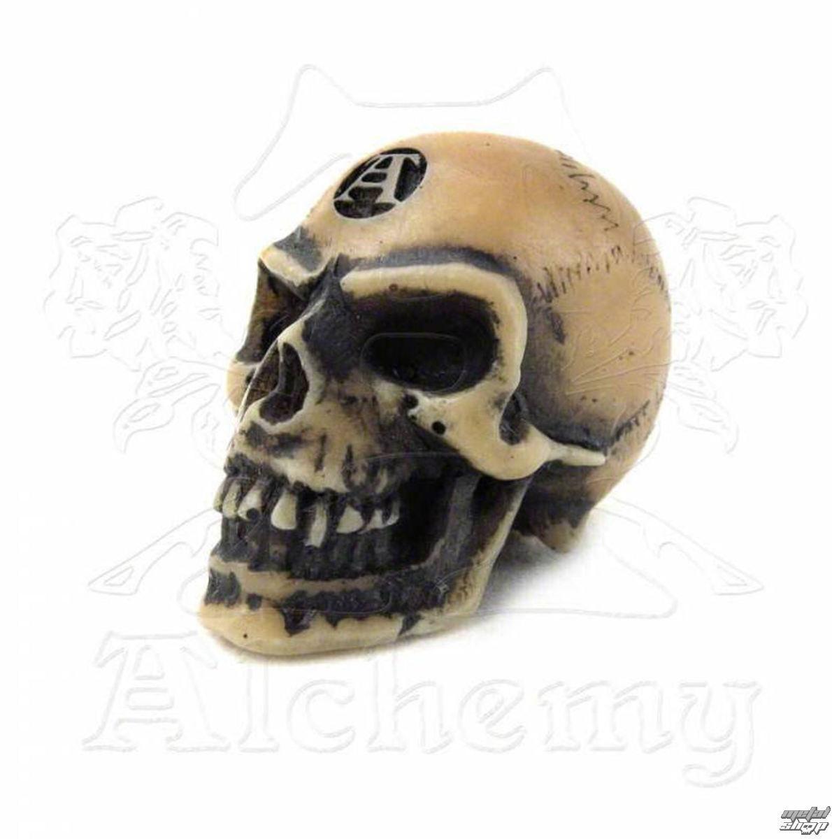 dekorácia Alchemy Gothic - Lapillus Worry Skull - V2
