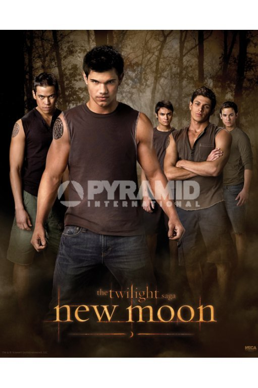 plagát Twilight - New Moon (Wolf Pack) - MPP50303 - PYRAMID POSTERS