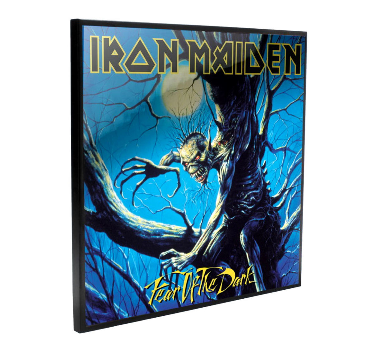 obraz Iron Maiden - Fear of the Dark - B4393M8