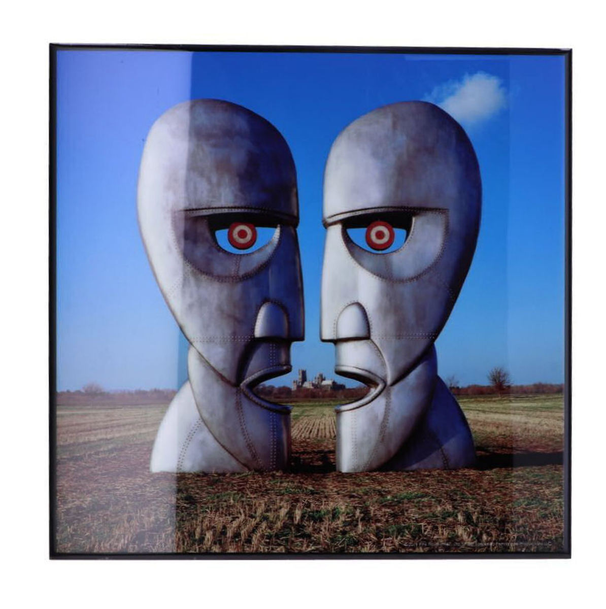 obraz Pink Floyd - The Division Bell - B4854P9