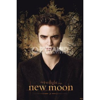 plagát Twilight - New Moon (Edward Trees) - PYRAMID Posters - PP32011
