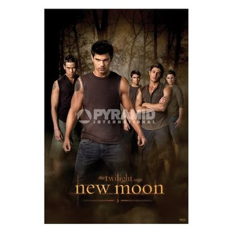 plagát Twilight - New Moon (Wolf Pack) (Súmrak) - PP32065 - PYRAMID POSTERS